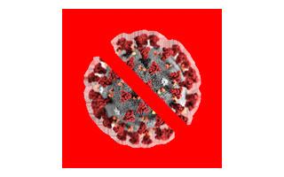Info zu Coronavirus